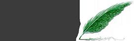 Site971 Logo